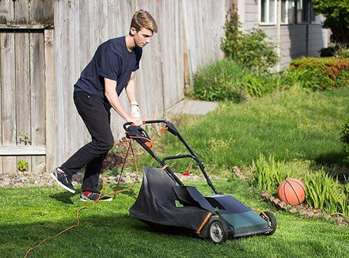 Bild Schülerin oder Schüler als Gartenhilfe gesucht?