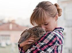 In den Sommerferien Haustiere betreuen