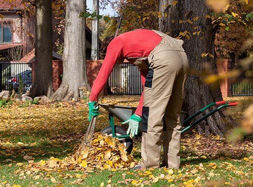 Laub fegen als Ferienjob in den Herbstferien